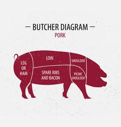 cut pork poster butcher diagram vector image