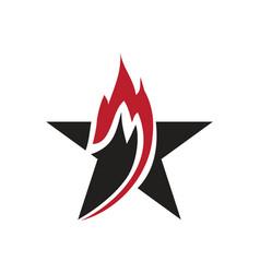 flam star logo vector image