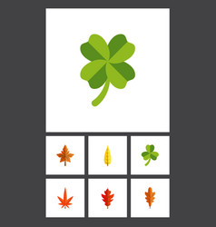 Flat icon leaf set of alder aspen leafage and vector