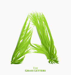 Letter a juicy grass alphabet green a vector