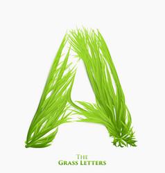 Letter a of juicy grass alphabet green a vector