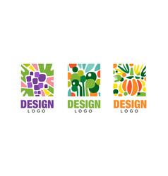 set logo design with fresh fruits vegetarian vector image