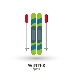 skies winter sport design vector image