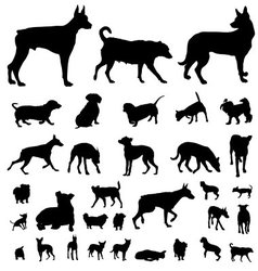 Dog silhouette set vector image vector image