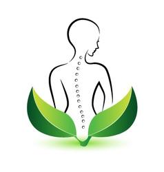 Human Spine logo vector image vector image
