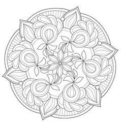 Adult coloring bookpage a zen mandala image for vector