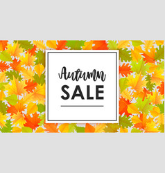 autumn sale banner design with yellow leaves vector image