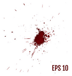 blood or paint splatters blood splashes drops and vector image