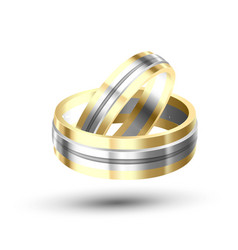 golden with silver element wedding rings vector image