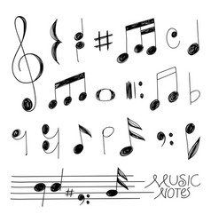 hand drawn music notes design vector image