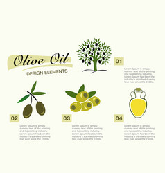infographic get olive oil pictures for four steps vector image