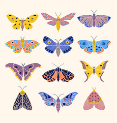 moths and butterflies vector image