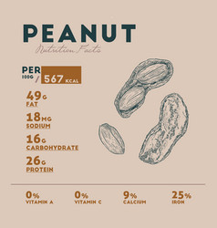 Nutrition facts of peanut vector