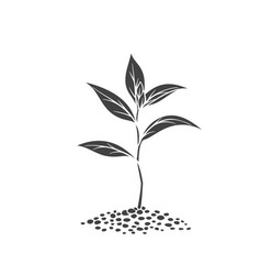 Sprout glyph icon vector