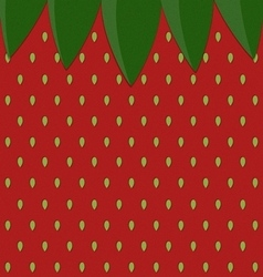 strawberry surface pattern with leaf vector image