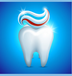 tooth whith toothpaste dental care vector image