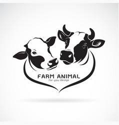 Two cows head design on a white background vector