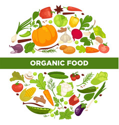 organic food promotional poster with vegetables in vector image vector image