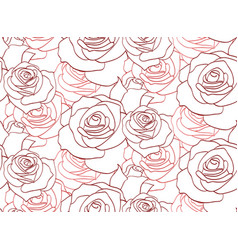 seamless texture with contour of roses for your vector image vector image
