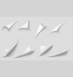 curled page corner paper edges curve pages vector image