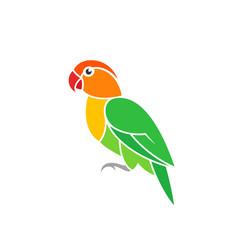 Green parrot lovebird vector