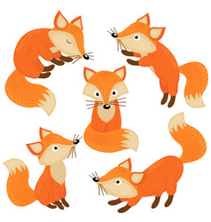 Set of isolated cute foxes part 1 vector