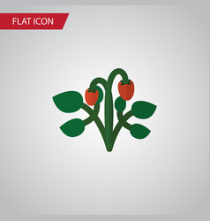 isolated strawberry flat icon berry vector image vector image