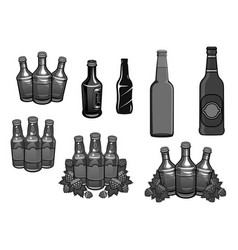 beer bottles and hops brewery icons set vector image