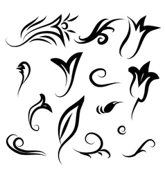Decor items of flowers leaves and curls vector image
