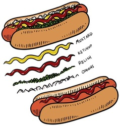 doodle food hotdogs vector image vector image