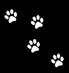 animals footprints great for any useanimals vector image