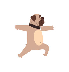French bulldog working out yoga excercise funny vector