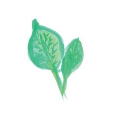 Handwritten watercolor leaves vector