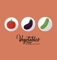 healthy vegetables icon vector image