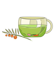 Herbal tea or color vector