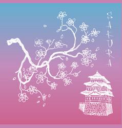 Sakura japanese cherry branch with flowers vector