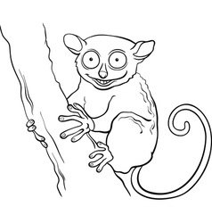 Tarsier animal cartoon coloring book vector