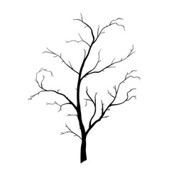 tree branch wood plant silhouette lineart trunk vector image