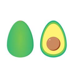 avocado whole and cut half vector image vector image