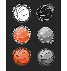 Set of basketballs on a gray background vector image vector image