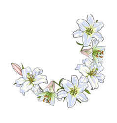 half round frame of white lily flowers decoration vector image vector image