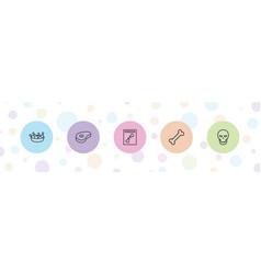5 bone icons vector