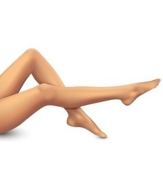 Beautiful women legs on white background vector