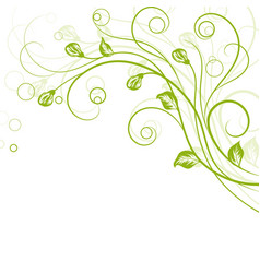 floral background in green vector image
