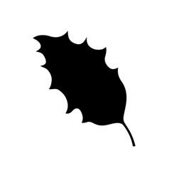 holly leaf vector image