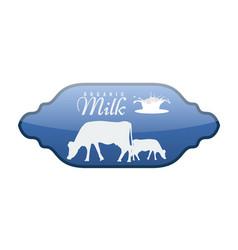 milk label with milk splash and cow vector image
