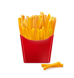 realistic detailed 3d french fries vector image