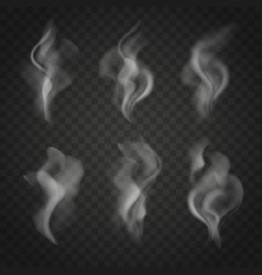 translucent smoke set isolated on dark background vector image