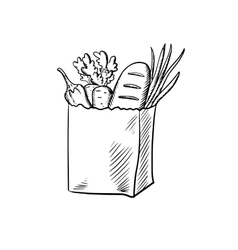 Fresh vegetables and bread in paper bag vector image