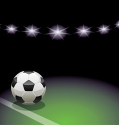 soccer ball and the stadium vector image vector image